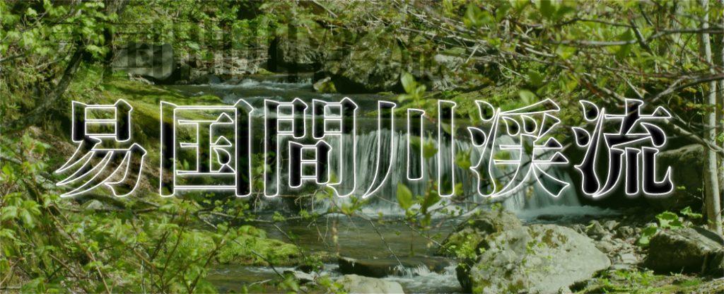 易国間川渓流